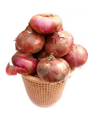 Onions - Basket