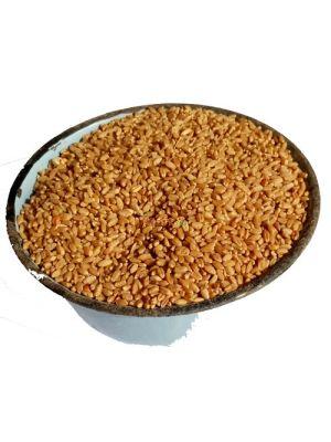 Wheat - 1 Mudu